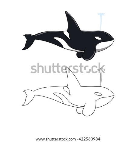 Killer Whale Illustration Coloring Book Stock Vector