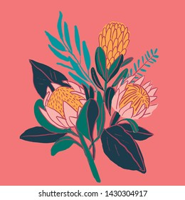 King protea hand drawn with outline