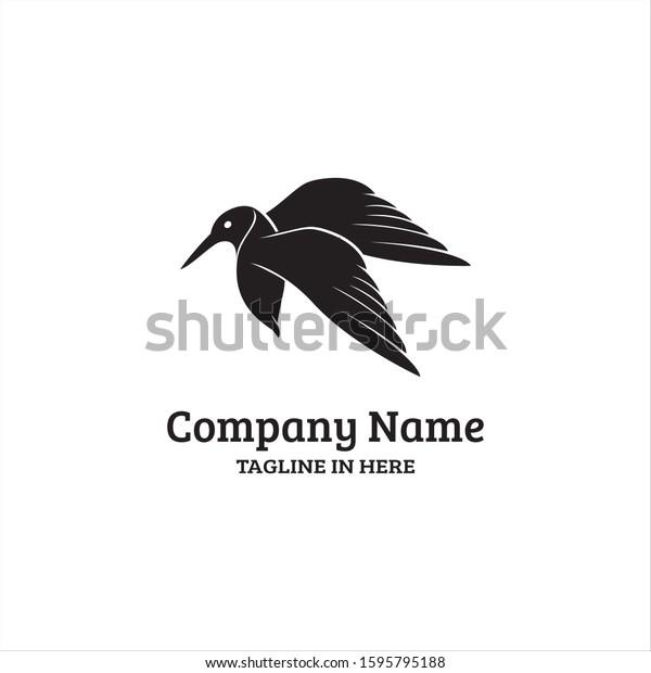 Kingfisher Bird Rare Australia Asia Very Stock Vector Royalty Free 1595795188