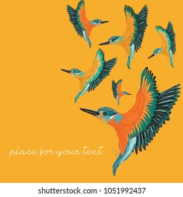 Kingfishers flying. Vector illustration of the birds on orange background. Place for your text.