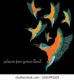 Kingfishers flying. Vector illustration of the birds on black background. Place for your text.