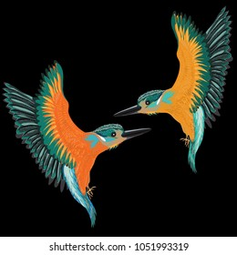Kingfishers flying. Vector illustration of two birds on black background