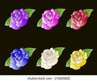 Kit six roses