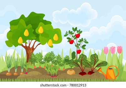Kitchen garden or vegetable garden with different vegetables, fruit trees and tulips. Garden in the summer