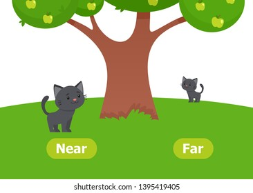 The kitten is near and far. Illustration of opposites near and far. Card for teaching aid, for a foreign language learning. Vector illustration on white background, cartoon style.