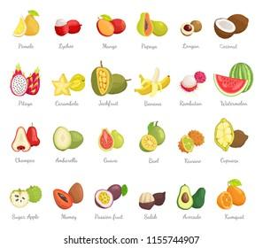 Kiwano coconut and banana set of ripe tropical fruits. Avocado and cupuacu, salak and kumquat, lychee and bael, papaya and succulent mango vector