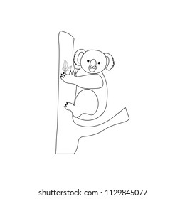 koala bear coloring pages on 260nw