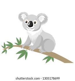 Koala Bear On Wood Branch With Green Leaves. Australian Animal Funniest Koala Sitting On Eucalyptus Branch. Cartoon Vector Illustration.