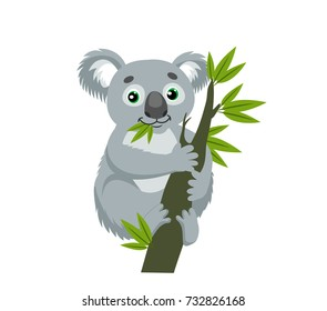 Koala Bear On Wood Branch With Green Leaves. Australian Animal Funniest Koala Sitting On Eucalyptus Branch. Cartoon Vector Illustration.