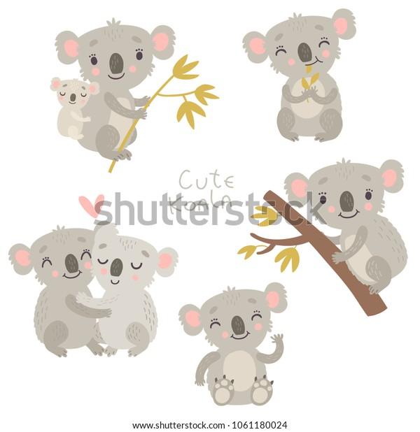 Koala, cute vector illustration