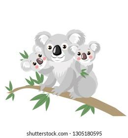 Koala Family On Wood Branch With Green Leaves. Australian Animal Funniest Koala Sitting On Eucalyptus Branch. Cartoon Vector Illustration. Koalas Are Not A Type Of Bear.