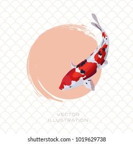 Koi carp japanese red and white fish vector illustration.