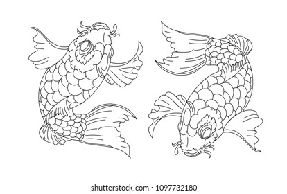 koi carp vector isolate for tattoo.Japanese carp drawing.Hand drawn line art of fish (Koi carp). Vector isolated. Idea for tattoo and coloring books.