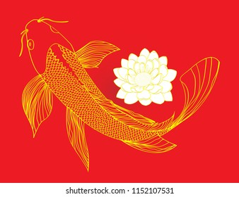 koi carp with water Lilly. Single Koi Fish with White Water Lilies