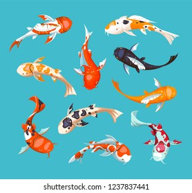 Koi carps. Koi japanese fish vector illustration. Chinese goldfish. Koi symbol of wealth. Aquarium illustration.  Fish seamless pattern.
