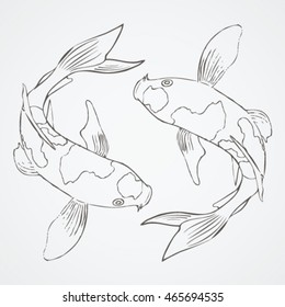 KOI FISH Sketch 3