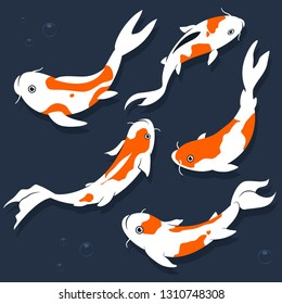 Koi fish vector cartoon flat set isolated on a white background.