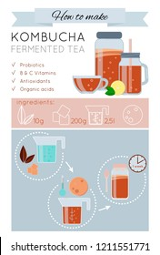 Kombucha fermented probiotic tea recipe vector infographic. How to make wonder drink Kombucha tea. Kombucha tea preparation icons. Vector isolated illustration flat style. Mason jar, mug, cup, scoby.