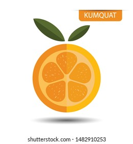 Kumquat, fruit on white background. Flat design style. vector illustration.