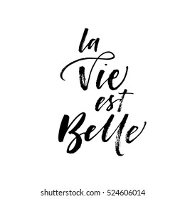 La vie est belle postcard. Life is beautiful in french. Ink illustration. Modern brush calligraphy. Isolated on white background.