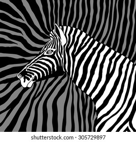 Label with the head of a zebra. Vector. profile head on zebra background zebra