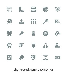 label icon set. Collection of 25 filled label icons included Ticket, Laser, Hairdryer, Record player, Reduce, Cherry, Toilet, Hose, Price, Leo, Parking, Water bottle, Barber, Gps