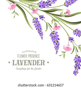 Label with lavender. Bunch of lavender flowers on a white background. Botanical illustration. Vintage style. Making gifts of paper and textiles. Vector illustration