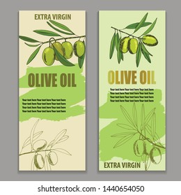 label olive oil, vector illustration banner, cover, broshure, hand-drawn branch olives