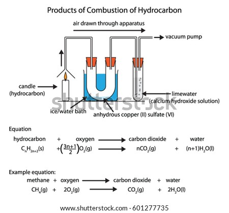 Labeled Diagram Showing Products Hydrocarbon Combustion Stock Vector