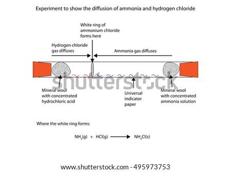 Diffusion Diagram | Labelled Diagram Show Diffusion Ammonia Hydrogen Stock Vector