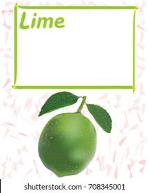 Label,sticker,tag design with lime and frame for price