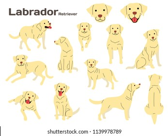 labrador illustration,dog poses,dog breed