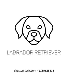 Labrador linear face icon.  Isolated outline dog head vector