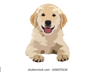 Labrador puppy vector art