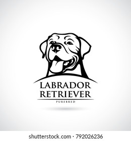 Labrador Retriever dog - vector illustration