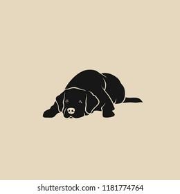 Labrador Retriever - isolated vector illustration