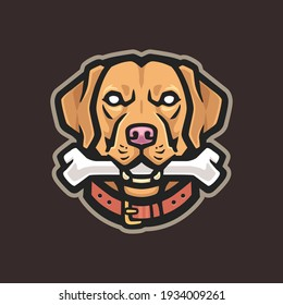 Labrador Retriever Vector Image. Pet Mascot Logo Template.