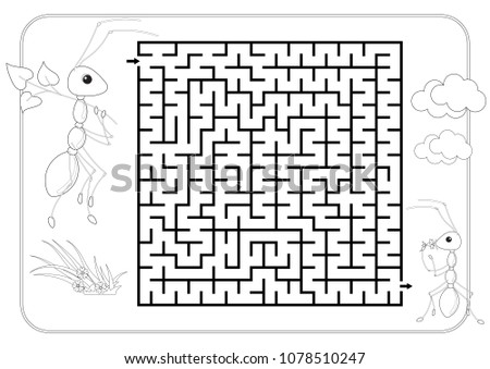 Labyrinth Maze Conundrum Coloring Book Page For Kids Entry And Exit Advanced Level