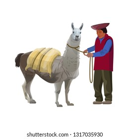Laden lama with a farmer. Vector illustration isolated on white background