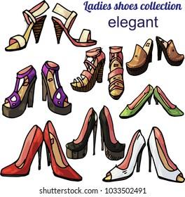 Ladies elegant shoes vector collection