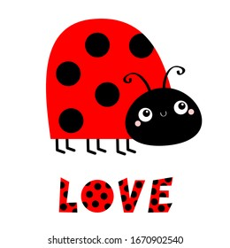 Lady bug ladybird insect icon. Side view. Cute cartoon kawaii funny baby character. Big eyes. Red black color dot. Word Love. Happy Valentines Day. Flat design. White background. Vector illustration
