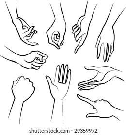 lady hands vector