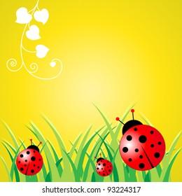 Ladybird Background