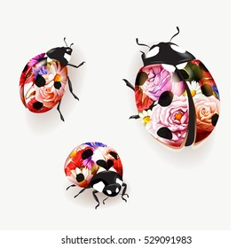 Ladybird illustration. Set of three flowers colored ladybirds isolated on white. Rose, peony, camomile, cornflower. Can be used in different ways of design, appearance, cover, etc. Vector - stock