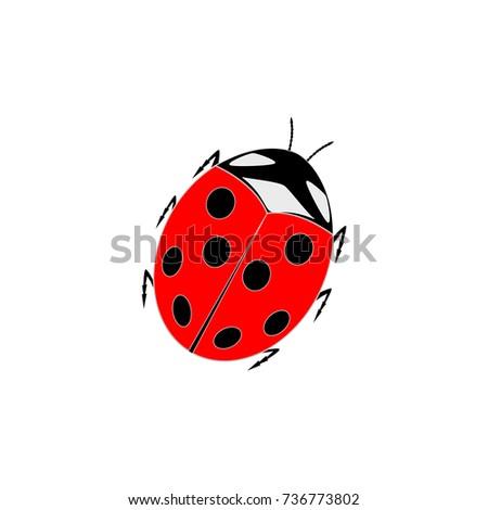 ladybird isolated illustration ladybug card cute stock vector