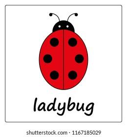ladybug - сartoon card, worksheet for children. Education game for kids. flashcards for learning English.