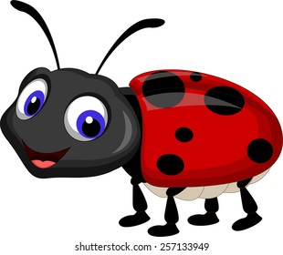 Superior Ladybug Cartoon
