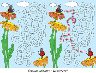 Ladybug maze for kids with a solution