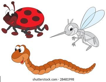 Ladybug, mosquito and worm