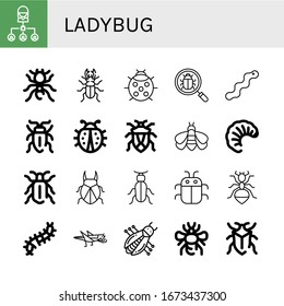 ladybug simple icons set. Contains such icons as Bug, Pheidole, Beetle, Ladybug, Worm, Sap beetle, Bumblebee, Larva, Ant, Scolopendra, Grasshopper, can be used for web, mobile and logo